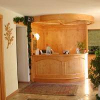 Hotel Chalet Alpino - (3)