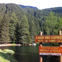 Rifugio Alpino - (3)