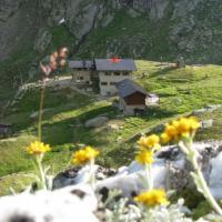 Rifugio Dorigoni - (6)