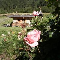 Hotel Chalet Alpenrose - (2)