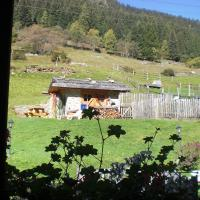 Hotel Chalet Alpenrose - (5)