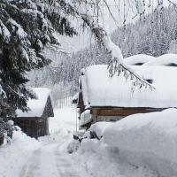 Hotel Chalet Alpenrose - (8)