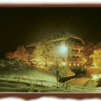Hotel Rauzi - (2)
